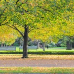 The Best Parks Near Park Grand Hotels
